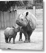 Rhino Mom And Baby Metal Print