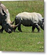 Rhino Mother And Calf - Kenya Metal Print