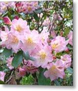 Rhododendron Flowers Garden Art Prints Floral Baslee Troutman Metal Print