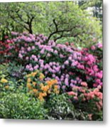 Rhododendron Hill Metal Print