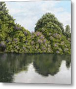Rhododendrons By The River Metal Print