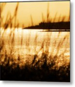 Rhos Point Viewed Through Beach Grass Metal Print