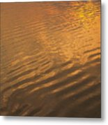 Rhythmic Sea At Hunting Island Metal Print