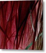 Ribbon And Lace Metal Print