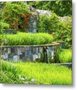 Rice Garden Metal Print