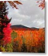 Rich Fall New Hampshire Colors Metal Print