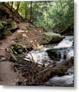 Ricketts Glen Falls 030 Metal Print