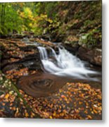 Ricketts Glen State Park Pennsylvania Autumn Waterfall Scenic Metal Print
