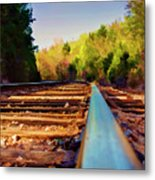 Riding The Rail Metal Print