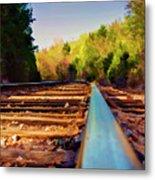 Riding The Rail Metal Print