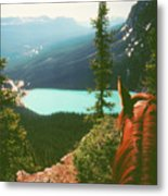 Rim-riding O'er The Canadian Rockies Metal Print