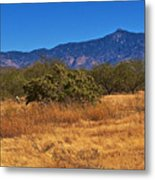 Rincon Peak, Tucson, Arizona Metal Print