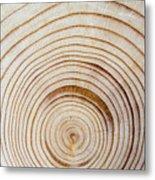 Rings Of A Tree Metal Print