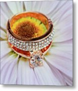rings on white daisy love Valentine's Day  gerbera and wedding gold  Metal Print