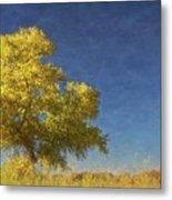 Rio Grande Bosque Blue and Gold, New Mexico Metal Print
