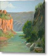 Rio Grande Canyon Metal Print