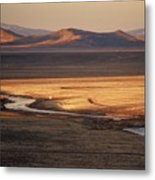 Rio Grande Evening Metal Print