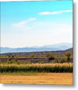 Rio Grande Flood Plain Metal Print