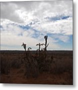 Rio Rancho New Mexico Metal Print