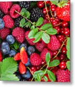 Ripe Of  Fresh Berries Metal Print