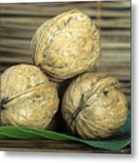 Ripe Walnuts Metal Print by Deyan Georgiev