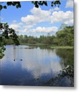 Ripples Of Land And Water Metal Print