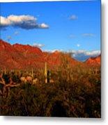 Rising Moon In Arizona Metal Print