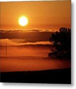 Rising Sun Lighting Ground Fog Metal Print