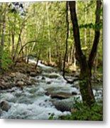 River At Greenbrier Metal Print