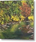 River At Hidden Acres 1. Metal Print