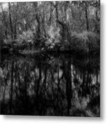River Bank Palmetto Metal Print