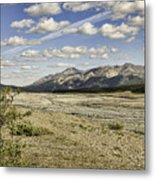 River Bed In Denali National Park Metal Print