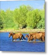 River Crossing Metal Print