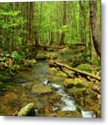River Crossing On The Maryland Appalachian Trail Metal Print