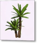 River Cycad Plants Metal Print