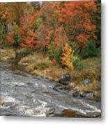 River Foliage Metal Print