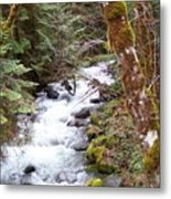 River For Your Thoughts Metal Print