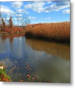 River Hudson Autumn Creek Metal Print