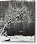 River In The Winter Metal Print