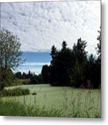 River Of Algae And Stippled Clouds Metal Print