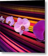 River Of Orchids Metal Print