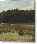 River On The Edge Of A Wood Metal Print
