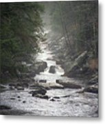 River Run Metal Print