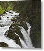 River Running Metal Print