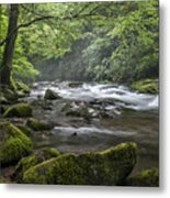 River Runs Free. Metal Print