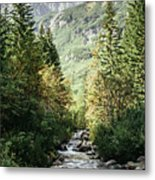 River Stream In Mountain Forest Metal Print