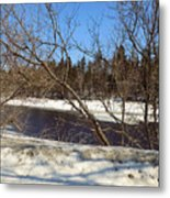 River Through The Branches Metal Print