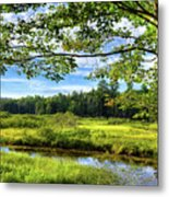 River Under The Maple Tree Metal Print