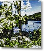 River View Through Flowers. On The Bridge Of Flowers. Metal Print