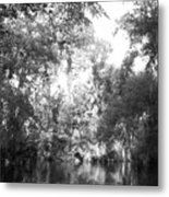 River Wooded Metal Print
